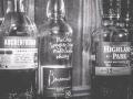 Whiskey tasting-17